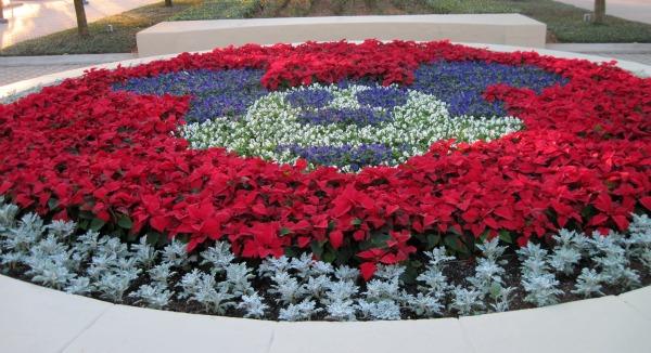 Contemporary Mickey Garden