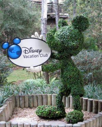 Disney Vacation Club Mickey Topiary