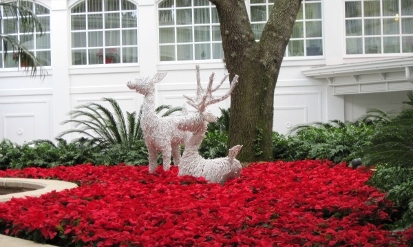 Christmas Display at Grand Floridian