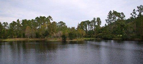 Sassagoula River by HarshLight
