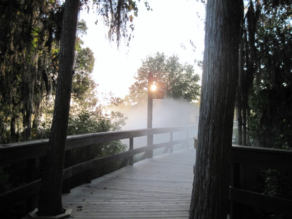 Wilderness Lodge in the Morning